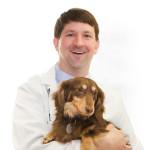 Dr. Andy Roark